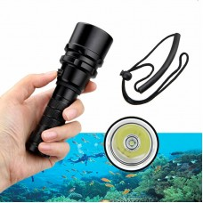 Scuba Diving Light -Small